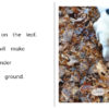 Autumn In The Woods pages 10-11