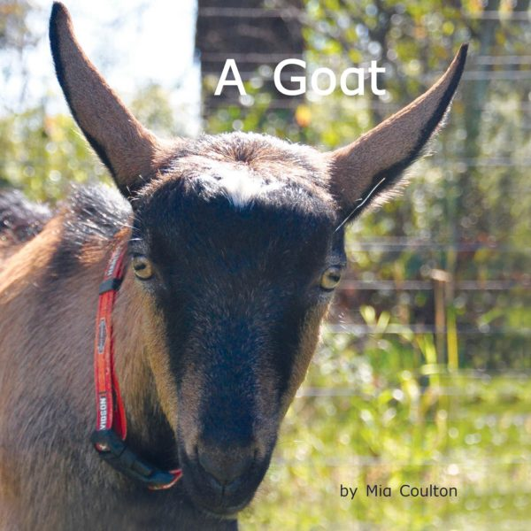 Cover of A Goat