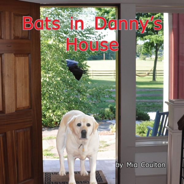 Cover of Bats in Danny's House