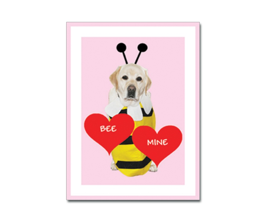 Danny Folded Valentine Card with envelope – Bee My Valentine Card