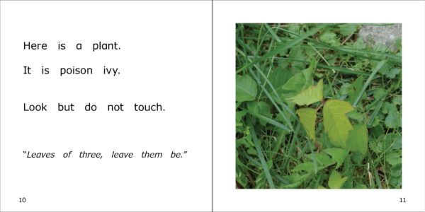 Pages 10-11 from Botanist Danny