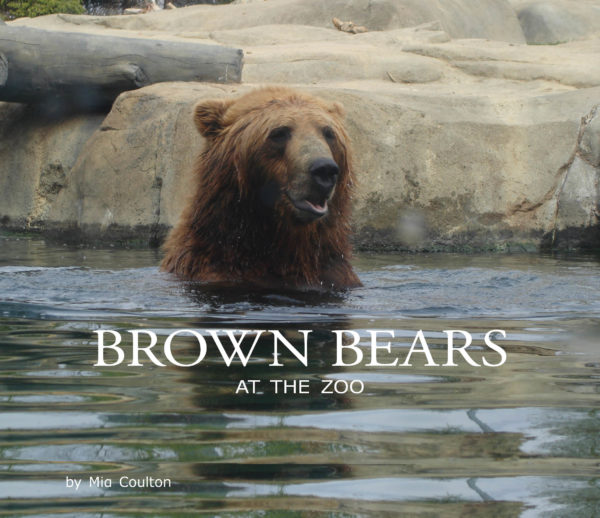Brown Bears At The Zoo