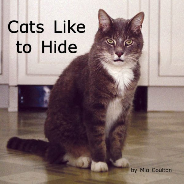 Cover of Cats Like to Hide