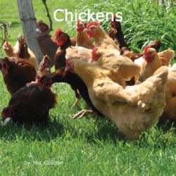 Cover of Chickens