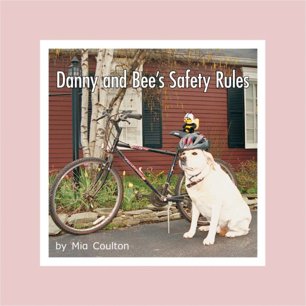 Danny and Bee's Safety Rules Lap Book