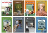 Covers of all 8 titles in the Danny's Big Adventure Series of Chapter Books