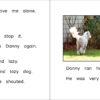 DannyAndTheBully_4-5