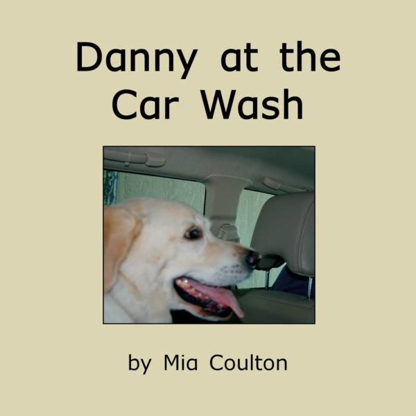 Cover of Danny at the Car Wash