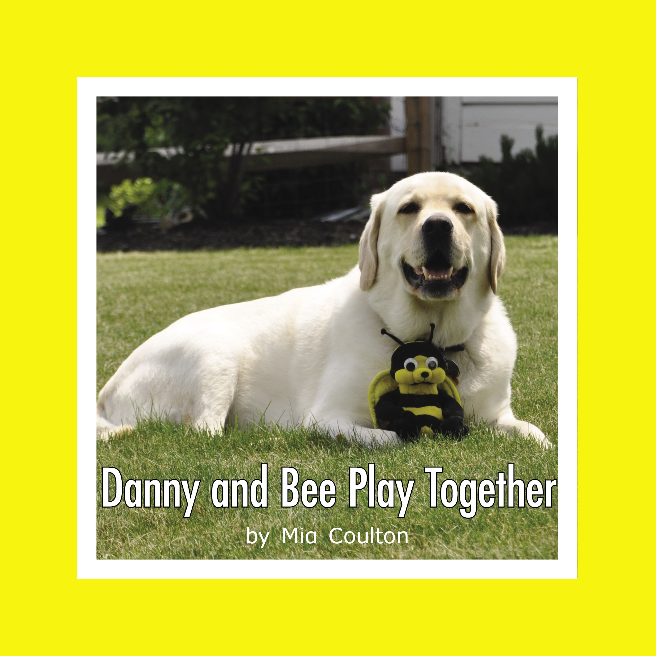 Cover of Danny and Bee Play Together Lap Book