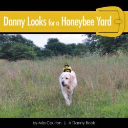 Danny Looks for a Honeybee Yard Cover