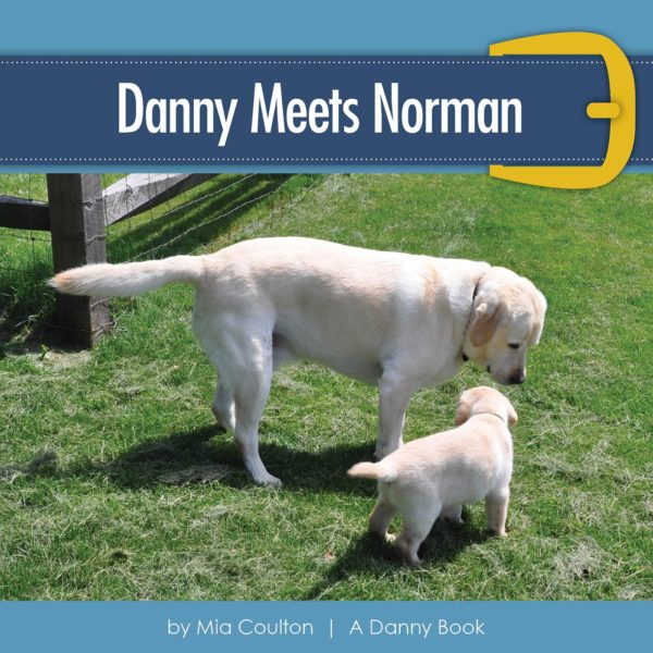 Cover of Danny Meets Norman