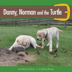 Cover of Danny, Norman and the Turtle