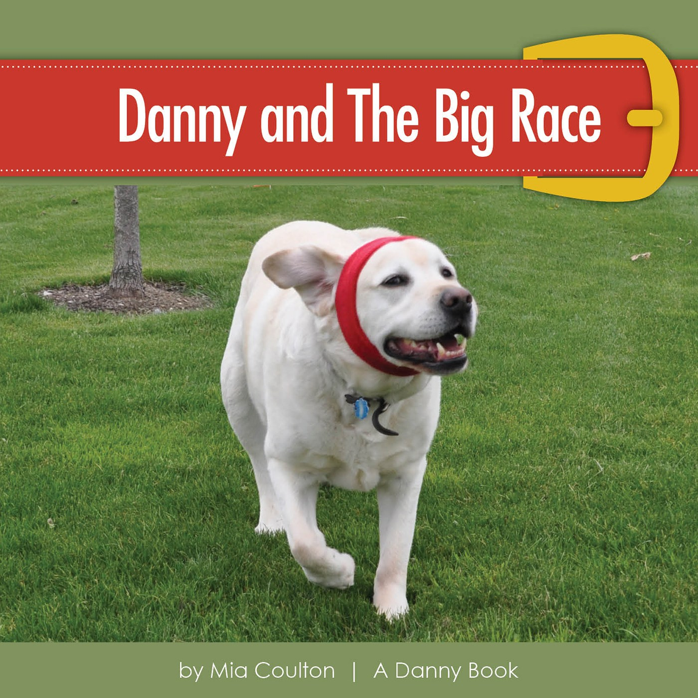 Cover of Danny and The Big Race