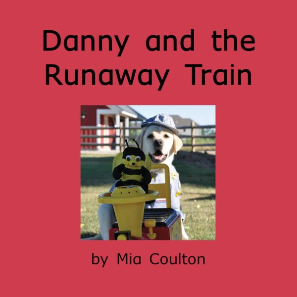 Cover of Danny and the Runaway Train