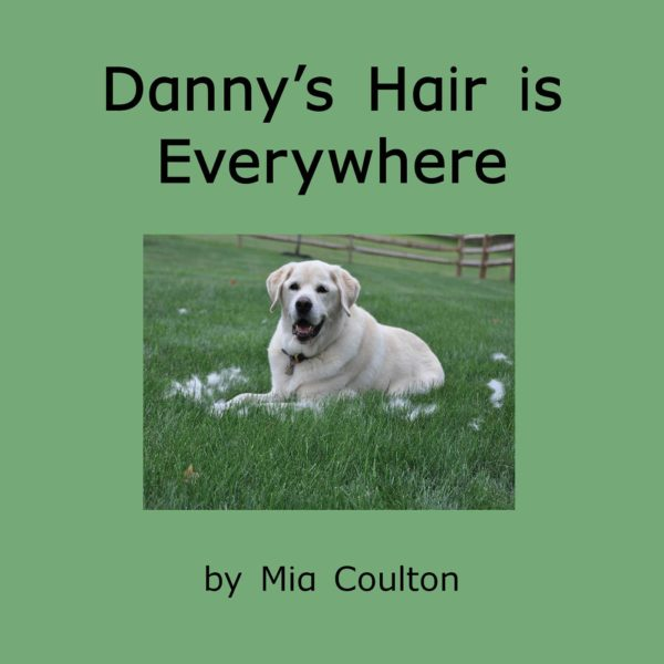 Cover of Danny's Hair is Everywhere