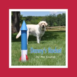 Cover of Danny's Rocket Lap Book