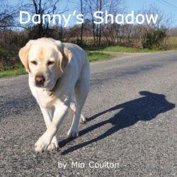 Cover of Danny's Shadow