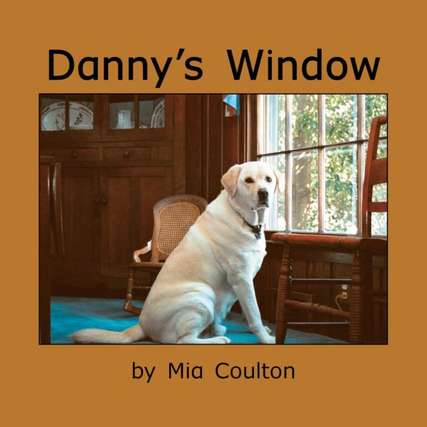 Cover of Danny's Window