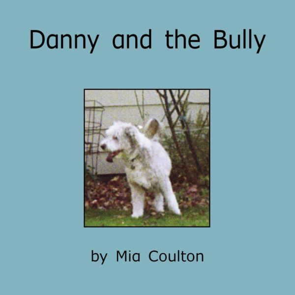Danny and the Bully Cover