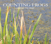 Cover of Counting Frogs Around the Pond