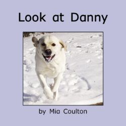 Cover of Look at Danny