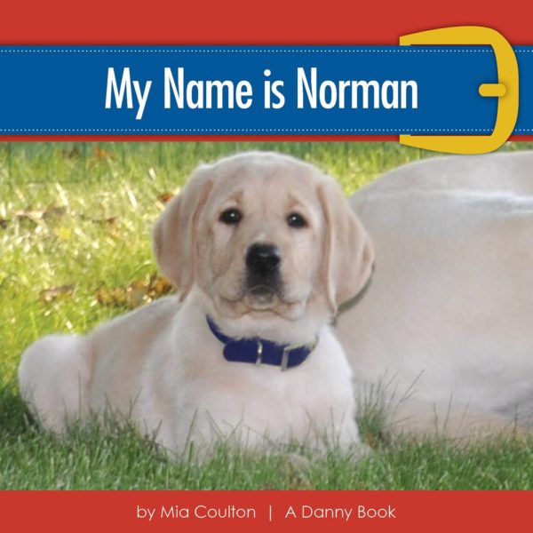 Cover of My Name is Norman
