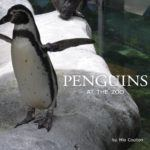 Cover of Penguins at the Zoo