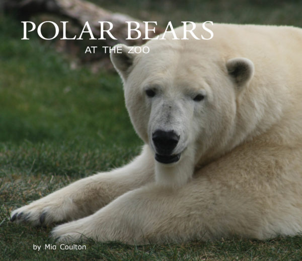 Polar Bears at the Zoo Cover