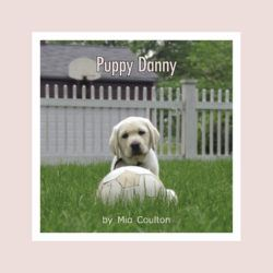 Cover of Puppy Danny Lap Book