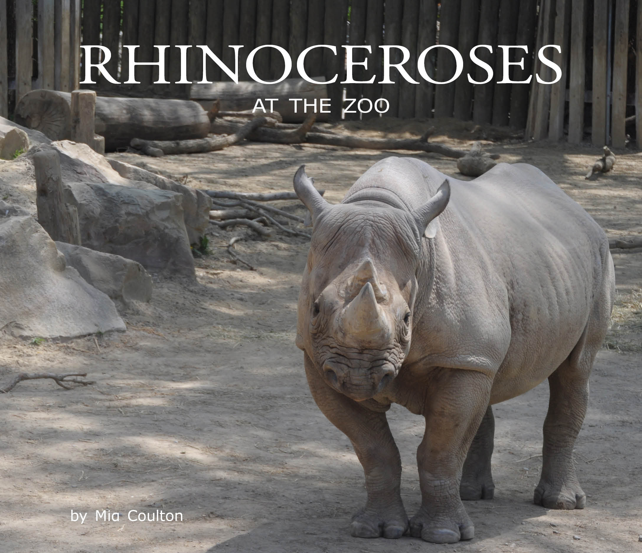 In Rhinoceroses At The Zoo Read More About Rhinoceroses