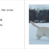 SnowDanny 8-9