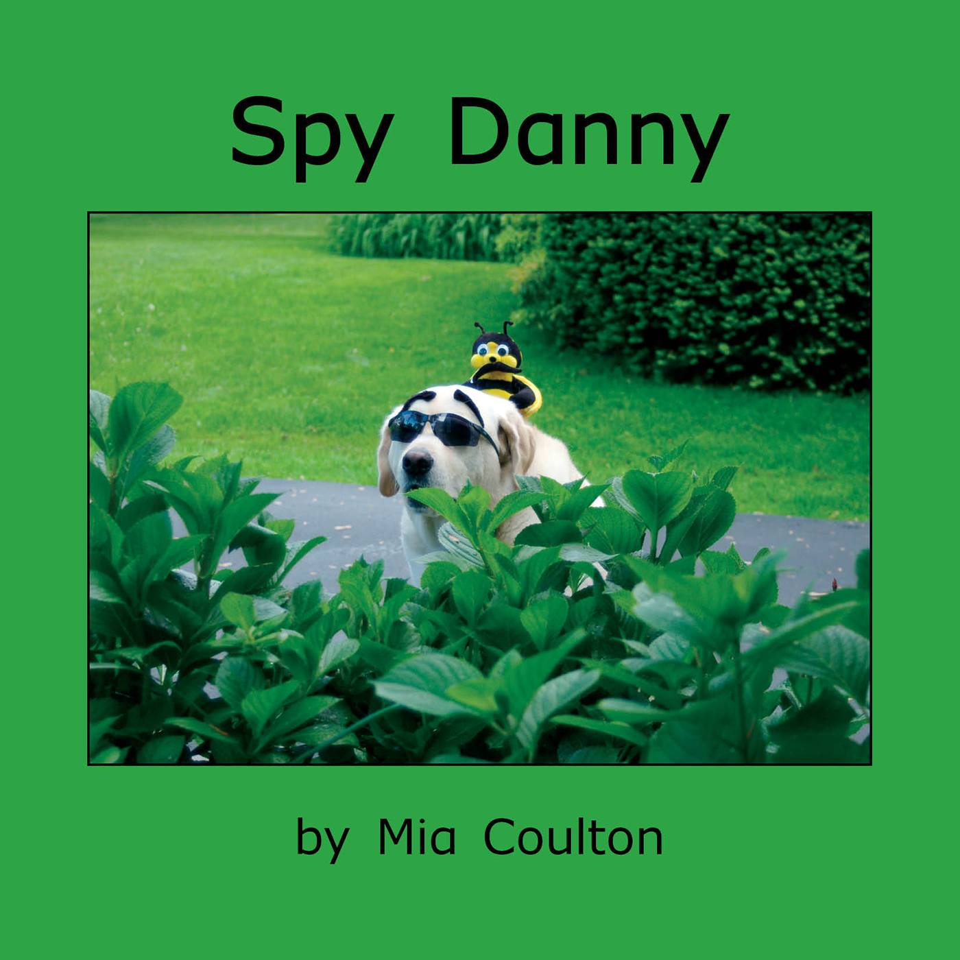 Cover of Spy Danny