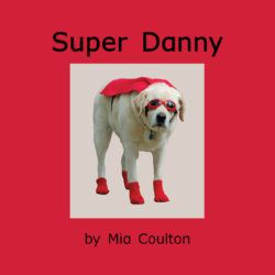Cover of Super Danny