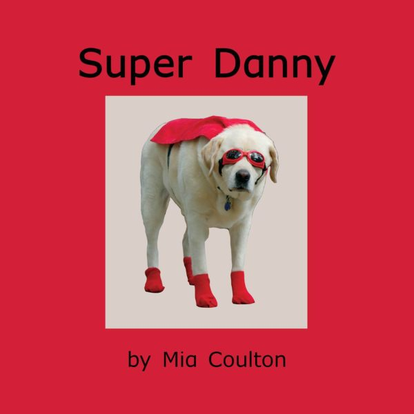 Cover of Super Danny