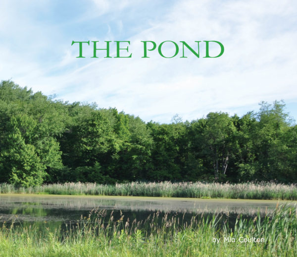 Cover of The Pond