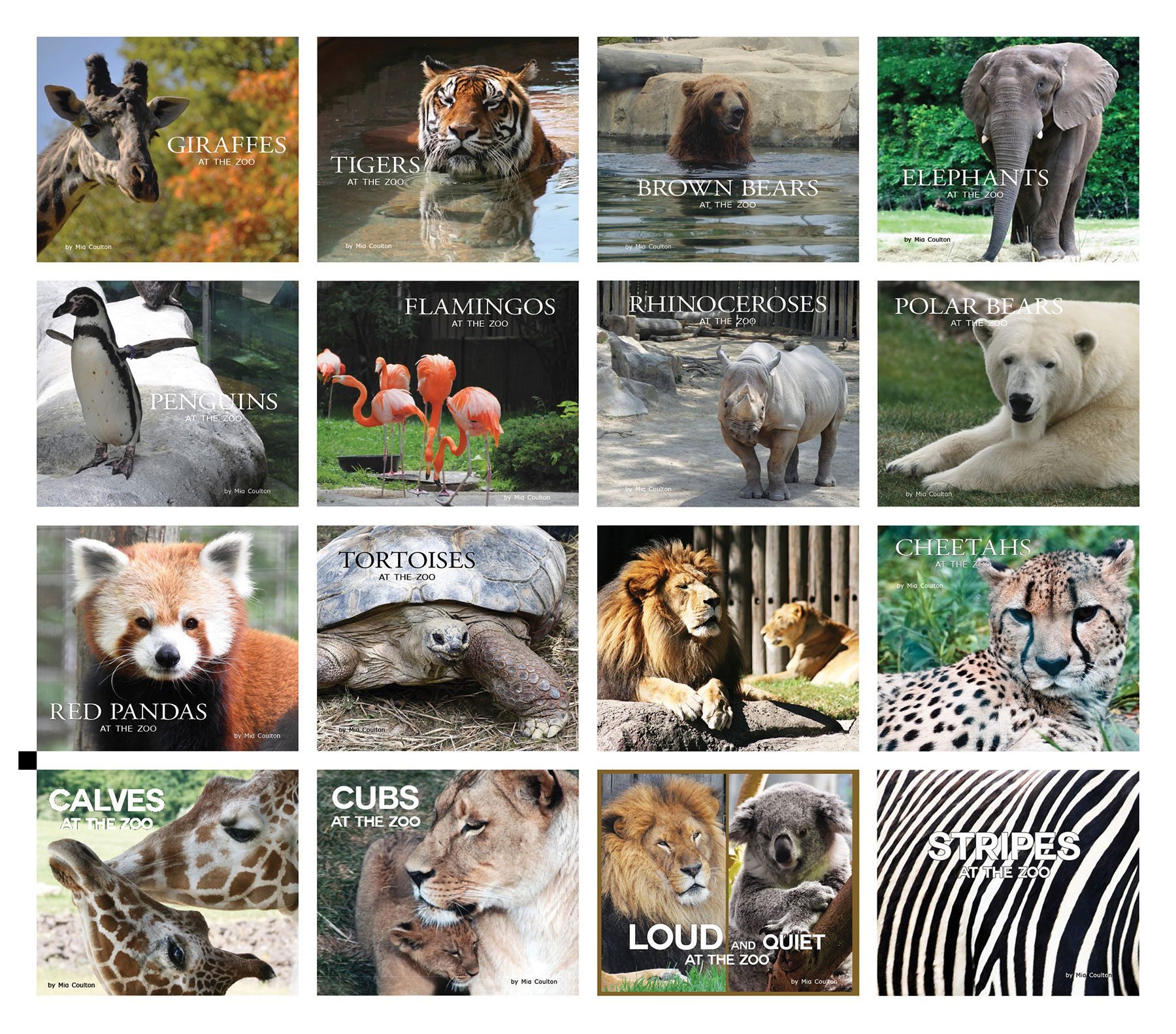 Front covers of the At the Zoo Collection
