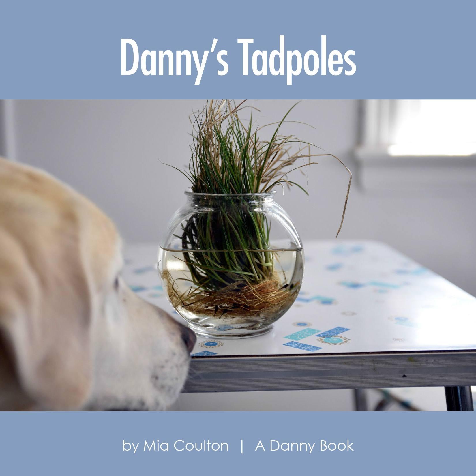 CVR_DanDanny's Tadpoles Cover