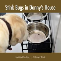 Stink Bugs in Danny's House Cover