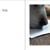 StinkBugInDannysHouse pages 02-03
