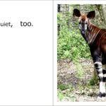 The okapi is quiet, too.