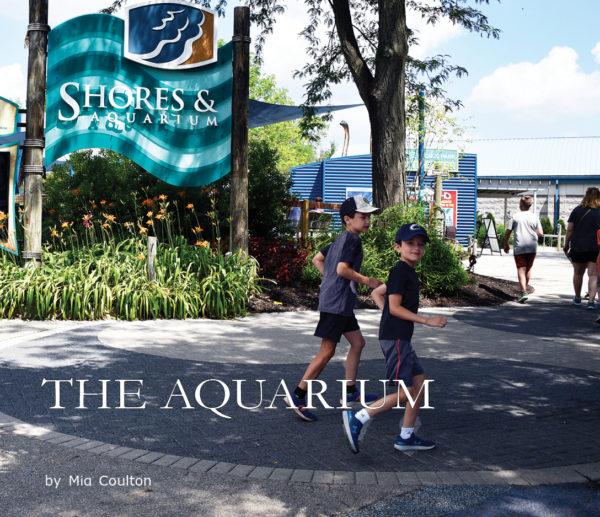The Aquarium cover