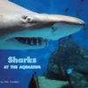Sharks At The Aquarium Cover
