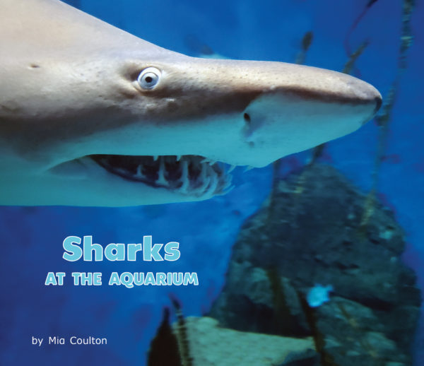 Sharks At The Aquarium Cover