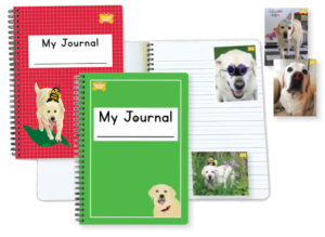 At-Home Reading and Writing Kits Journals+Stickers