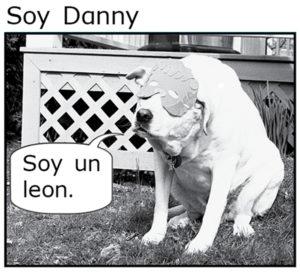 Soy Danny