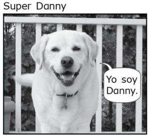 Super Danny- Spanish
