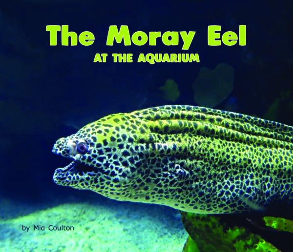 The Moray Eel at the Aquarium_CVR