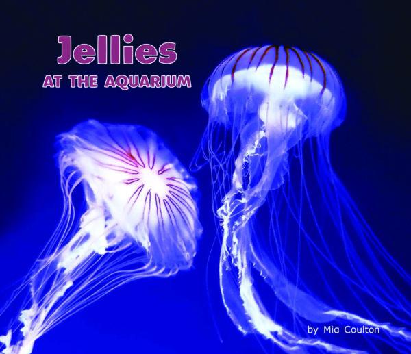 Jellies at The Aquarium