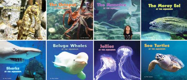 At the Aquarium Collection
