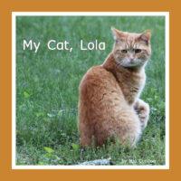 My Cat, Lola
